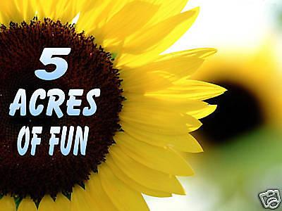 5 ACRES OF FUN